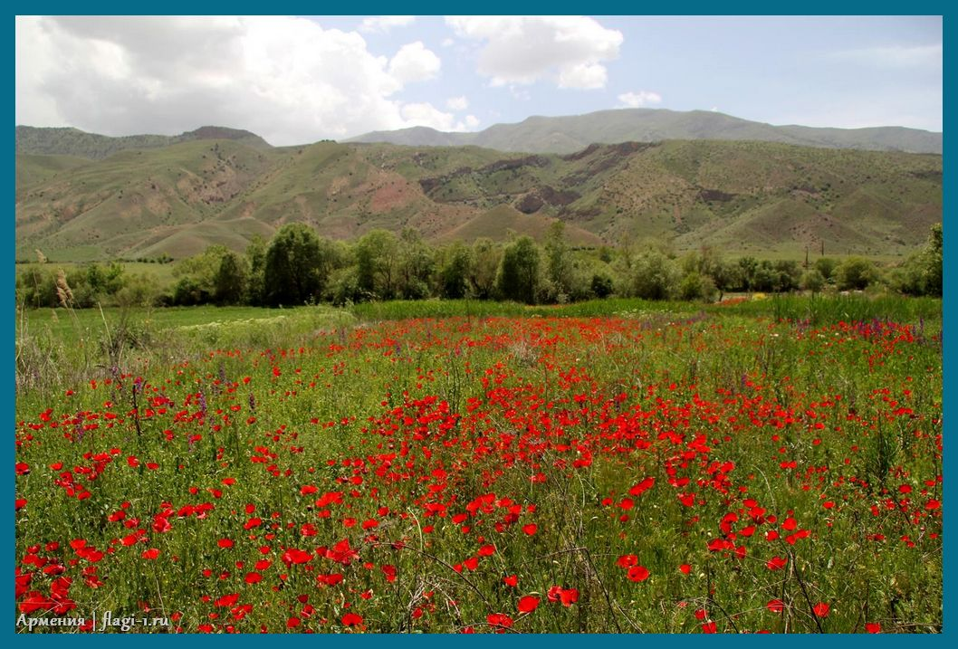 Armeniya. Fotografii 025 - Флаги стран - Армения | AM