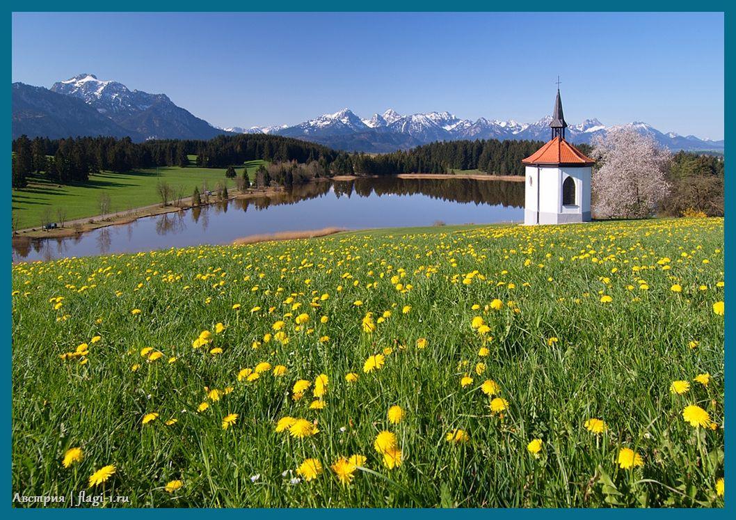 Avstriya. Fotografii 023 - Флаги стран мира в HD! Цвета, значение и символика флагов - Австрия | AT