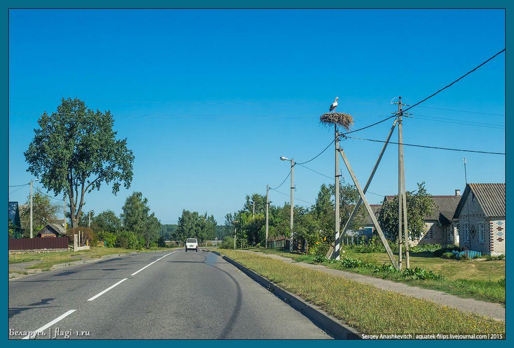 Belarus. Foto 007 - Флаги стран мира в HD! Цвета, значение и символика флагов - Беларусь | BY