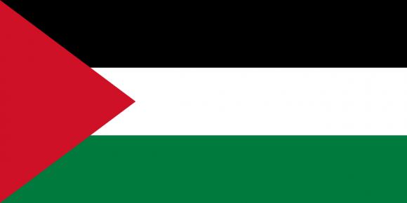 ps 1 - Флаги стран мира в HD! Цвета, значение и символика флагов - Палестинская автономия | PS