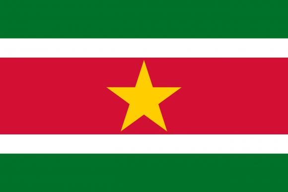 sr 1 - Флаги стран мира в HD! Цвета, значение и символика флагов - Суринам | SR