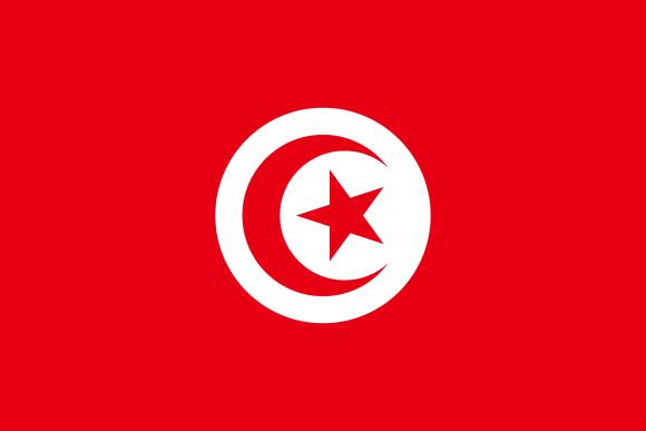 tn 1 - Флаги стран мира в HD! Цвета, значение и символика флагов - Тунис | TN